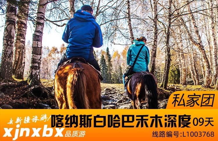 【独立私家团】新疆{北疆喀纳斯湖深度环线}纯玩9日游(走进古村落)